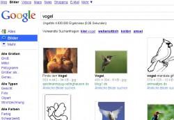 Vögel bei Google